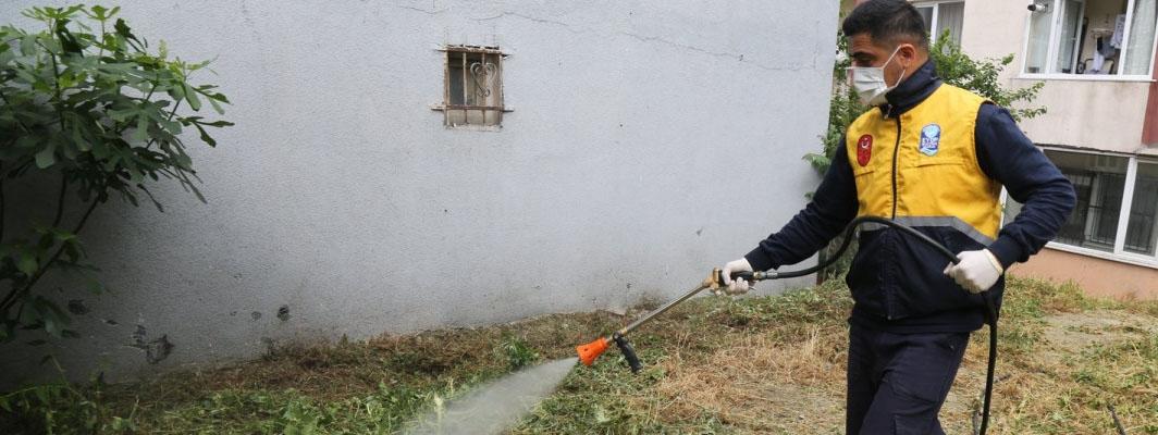 Eyüpsultan'da haşere ilaçlamaları devam ediyor